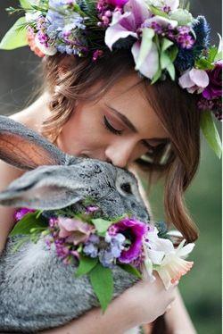 animales en las bodas12