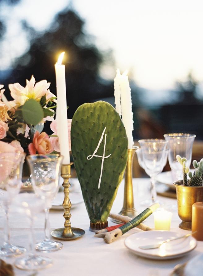 Cactus para bodas.